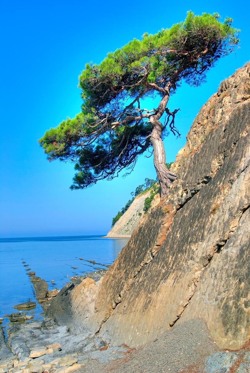 живописном берегу открытого моря между курортными местечками хут.Джанхот и с.Прасковеевка