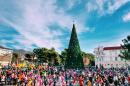 Новый год в Геленджике начнут встречать 15 декабря