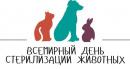 Геленджик присоединится ко Всемирному дню стерилизации домашних животных