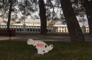 За выгулом собак в общественных местах Геленджика следит специальная комиссия