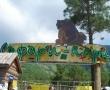«Сафари-парк»